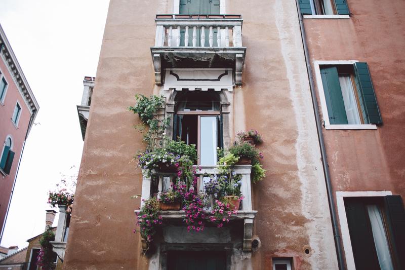 Venice terrace flowers