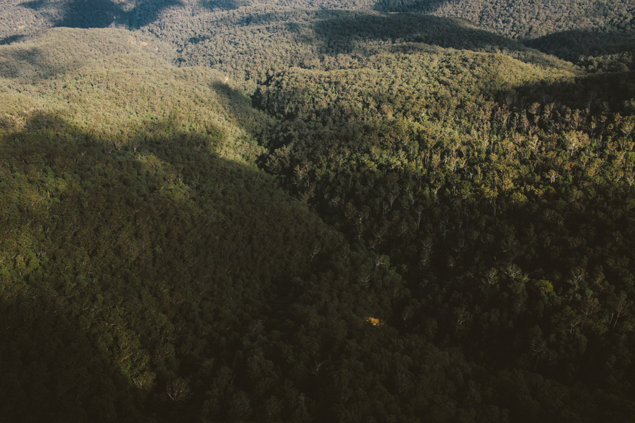 blue-mountains-sonjacphotography-21