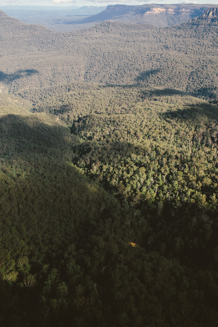 blue-mountains-sonjacphotography-24