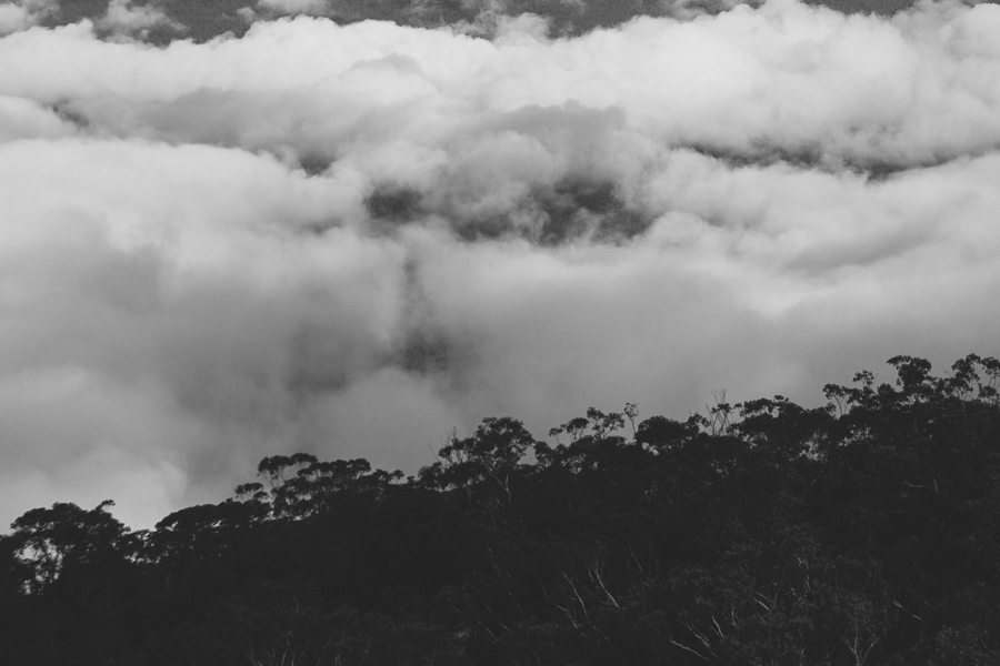 blue-mountains-sonjacphotography-5b