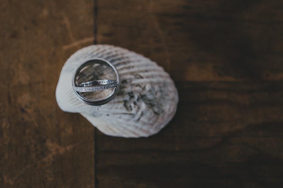 rings-palm-beach-shell-2