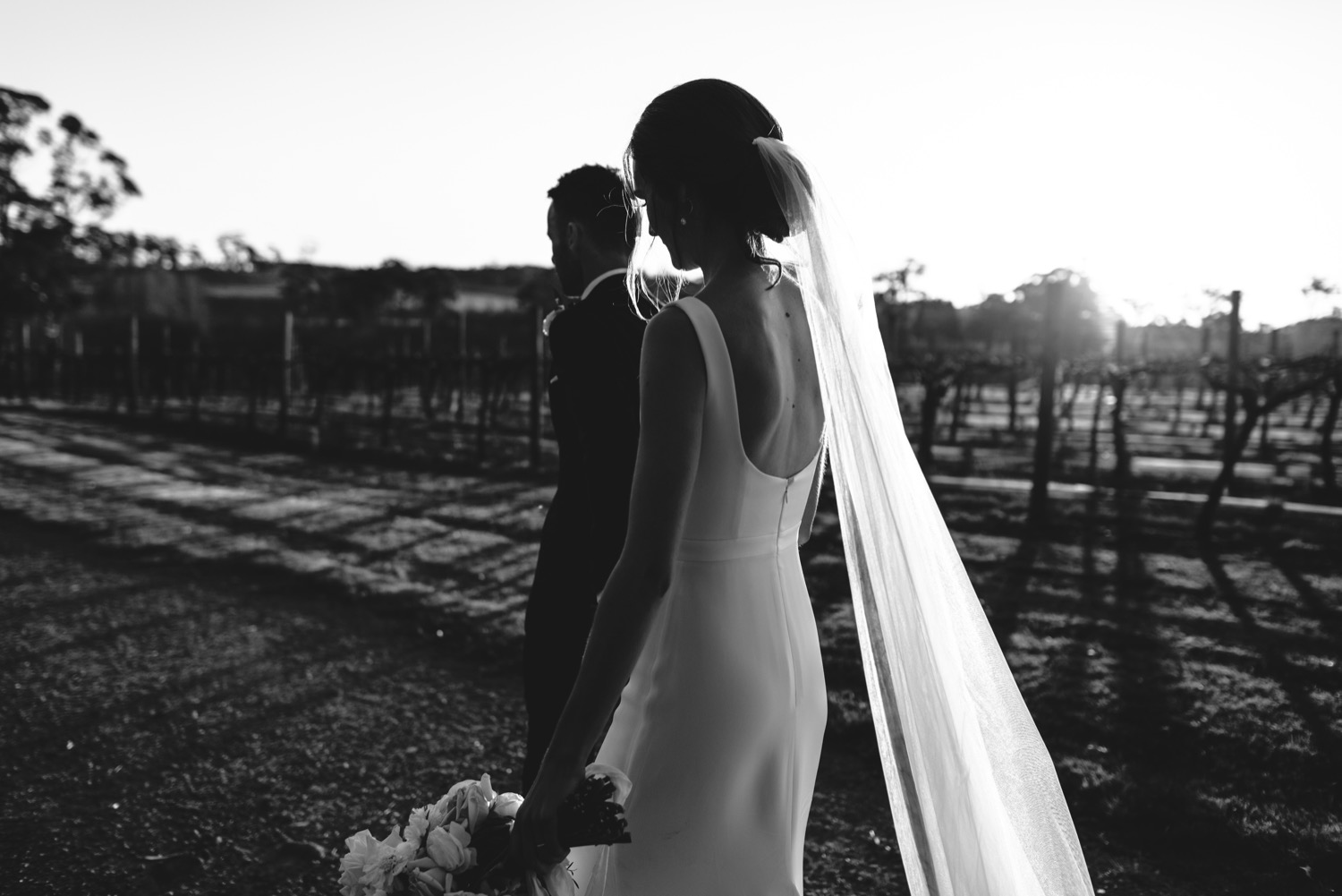Centennial vineyards wedding photographer